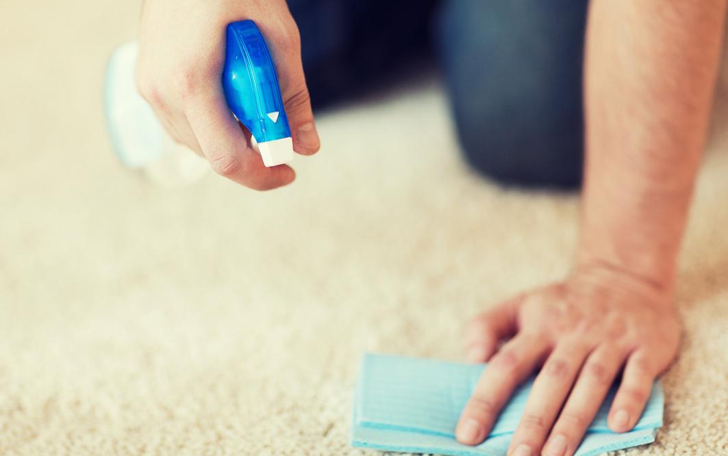 Reinigung des Teppich Vorschaubild