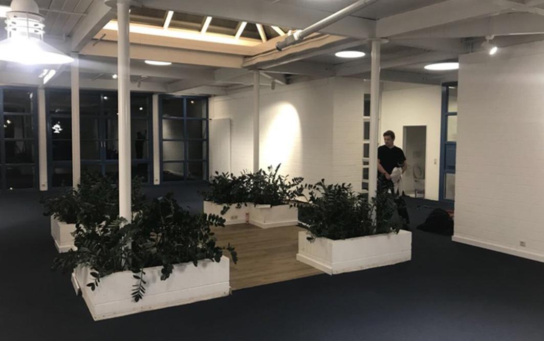 Beleuchteter Raum mit Pflanzen