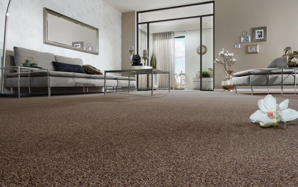 Wohnzimmer, Froschperpektive mit braunen Teppich, mit Blume, Glastisch, große Stehlampe, graues Sofa